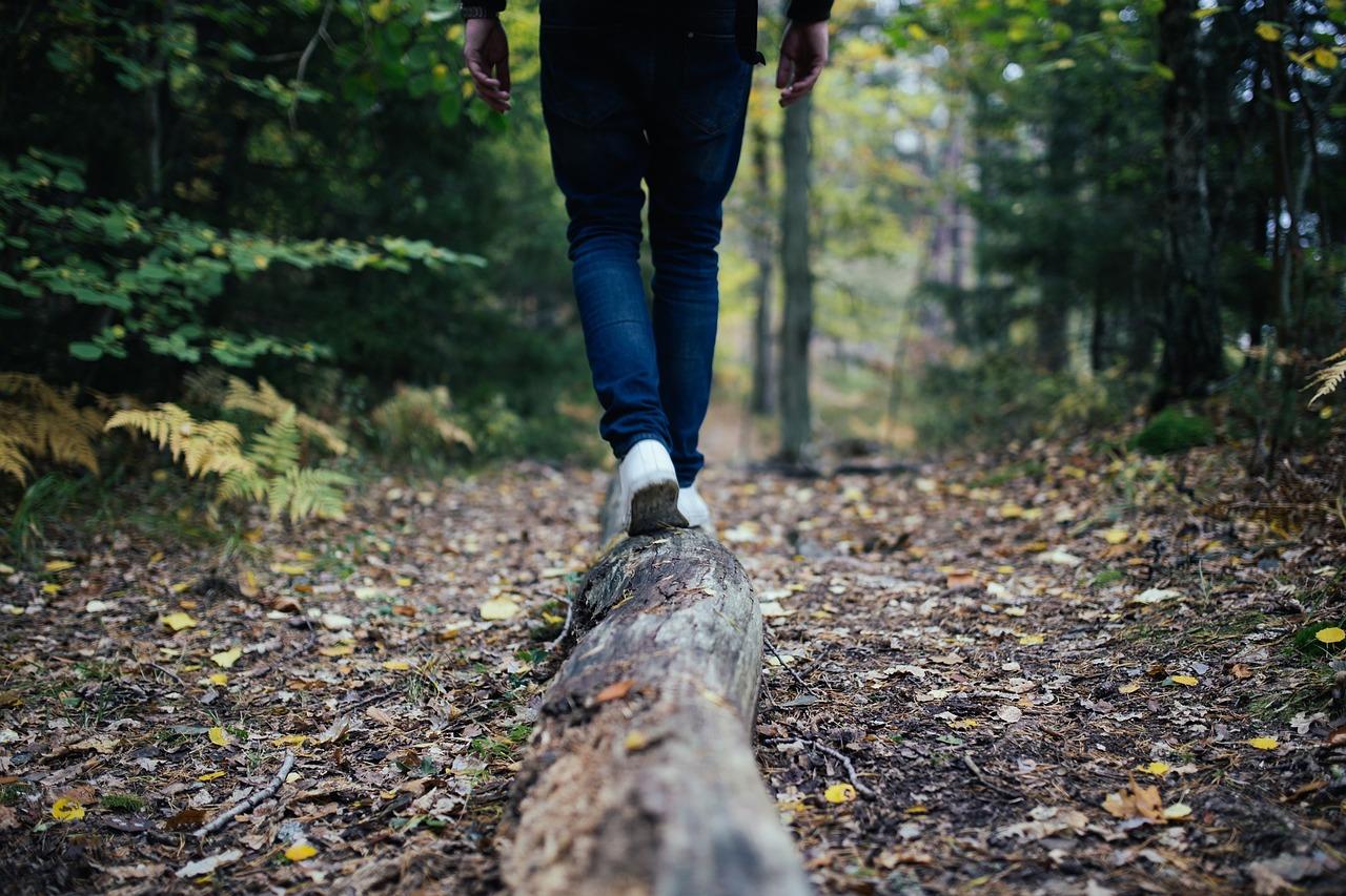 Camino espiritual-sendero-evolución-divinidad